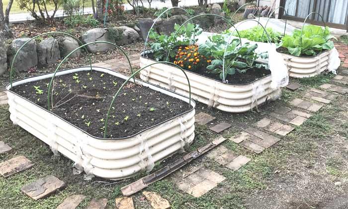 レイズドベッドで家庭菜園